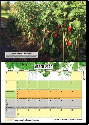The 2019 Organic Gardener's Year