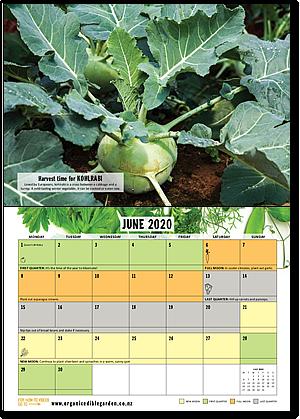 The 2020 Organic Gardener's Year